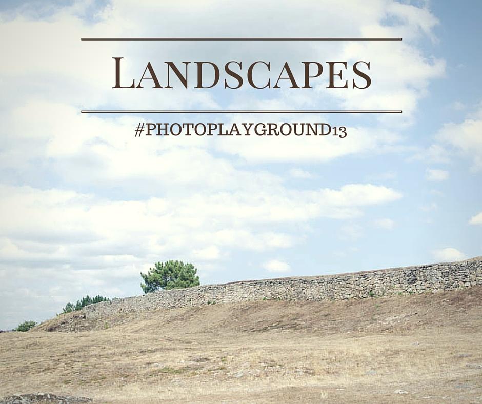 13 Landscapes